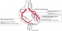 Coronary arteries labeled