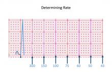 Determining Rate